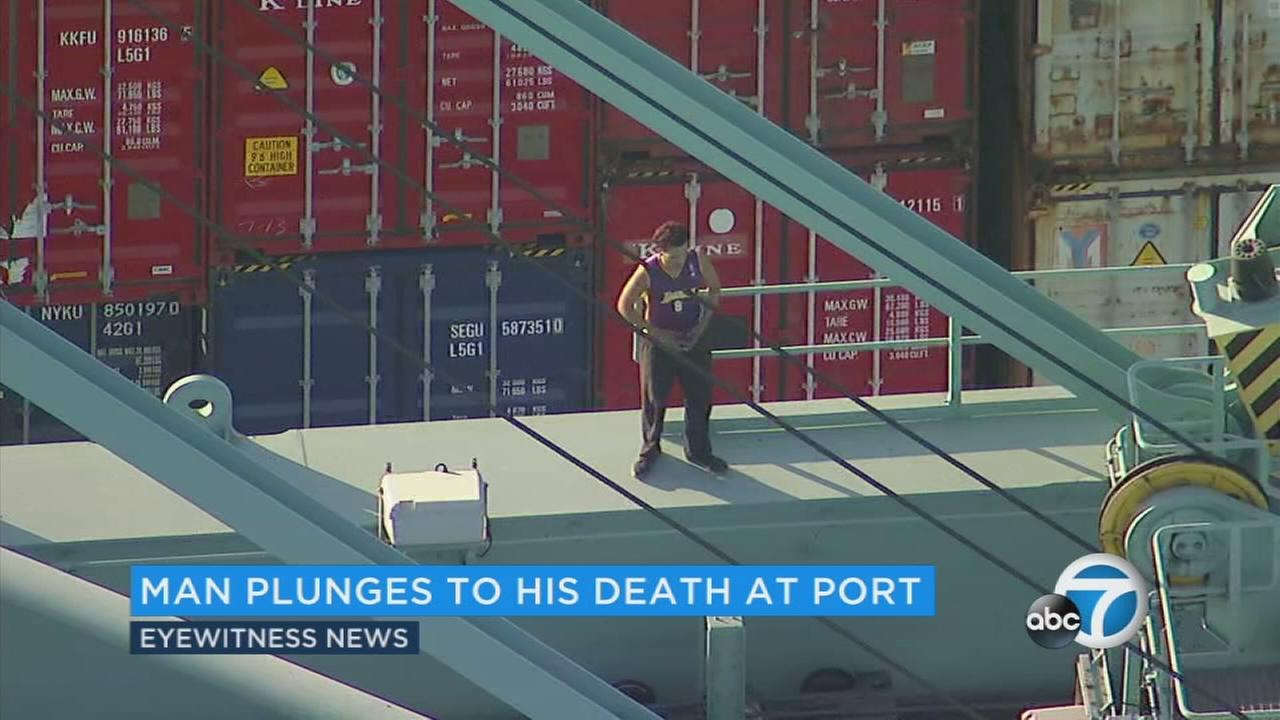Authorities have identified a suspected car thief who fell to his death from a loading crane at the Port of Los Angeles after leading police on a wild chase across the city.