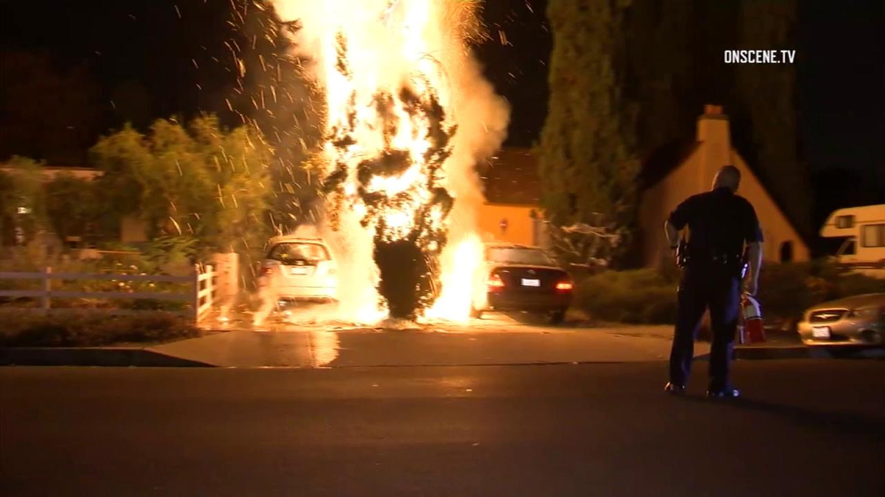 A Los Angeles Police Department officer looks on as flames engulf a tree and vehicles in front of a North Hollywood home on Thursday, Oct. 19, 2017.