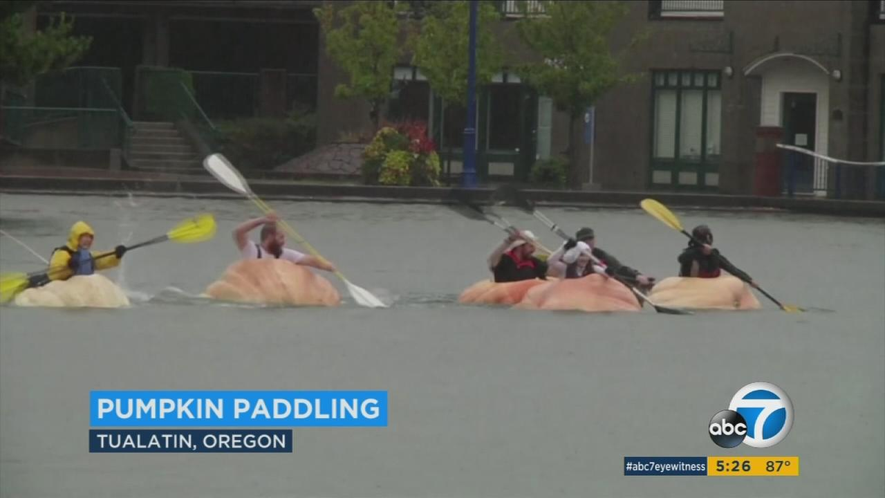 Pumpkin farmers in Oregon turned some of their biggest gourds into boats for an annual regatta.
