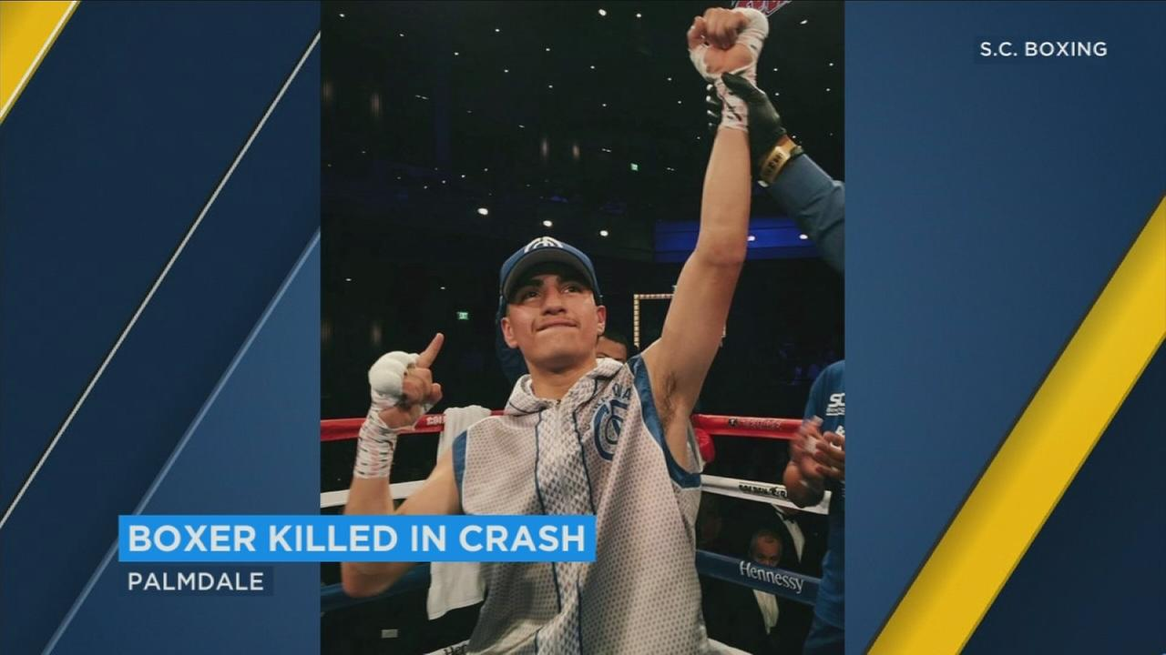 Boxer Cesar Diaz was killed when he lost control of his car and crashed into a tree in Palmdale on Friday, Nov. 24, 2017.