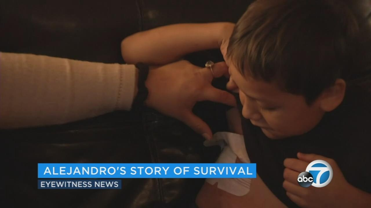 Alejandro Hernandez, 6, displays the bullet wound he sustained in a shooting at Rancho Tehama Elementary School.