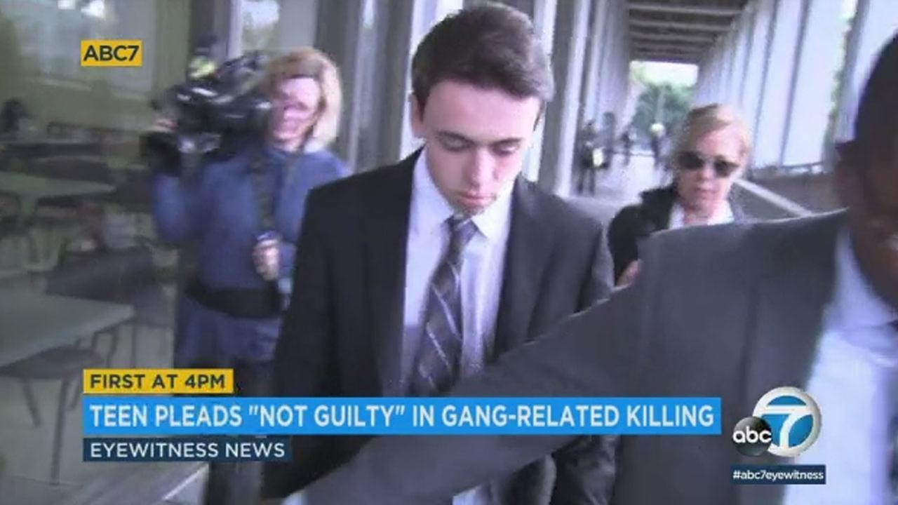 Eighteen-year-old Cameron Terrell pleaded not guilty to a gang-related killing in South Los Angeles.