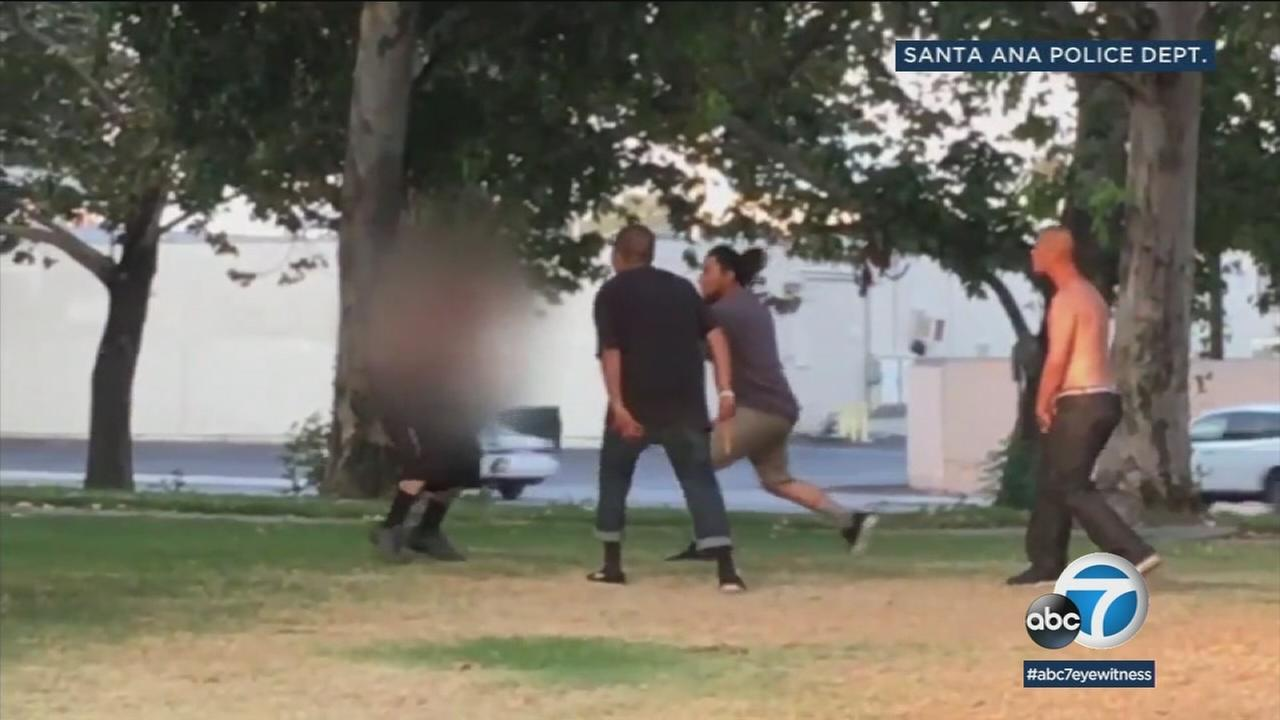 Video shows people fighting at a Santa Ana park.