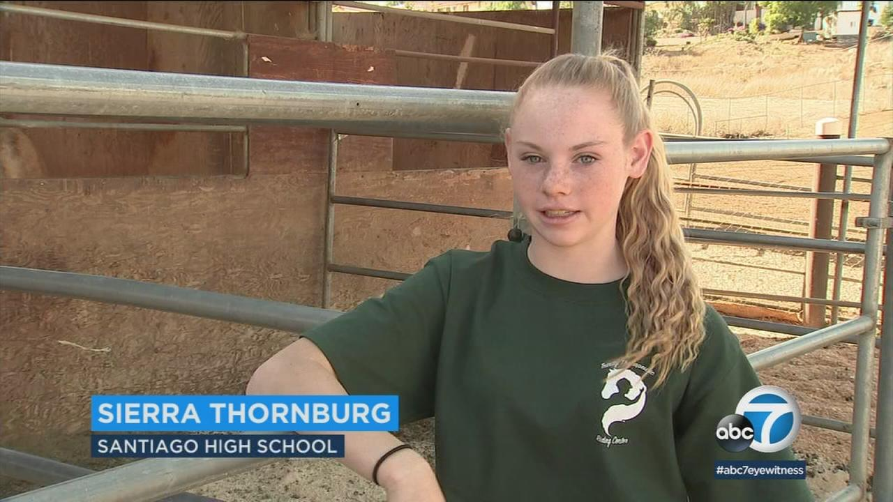 Sierra Thornburg loves volunteering at Trinity Riding Center in Riverside County, which rescues and rehabilitates horses to work with people with various disabilities.