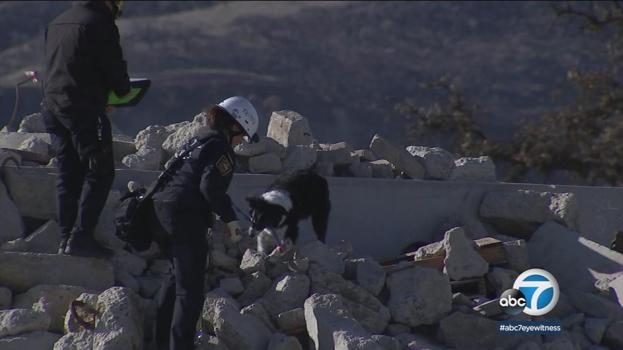 A dog searching through rubble is shown.