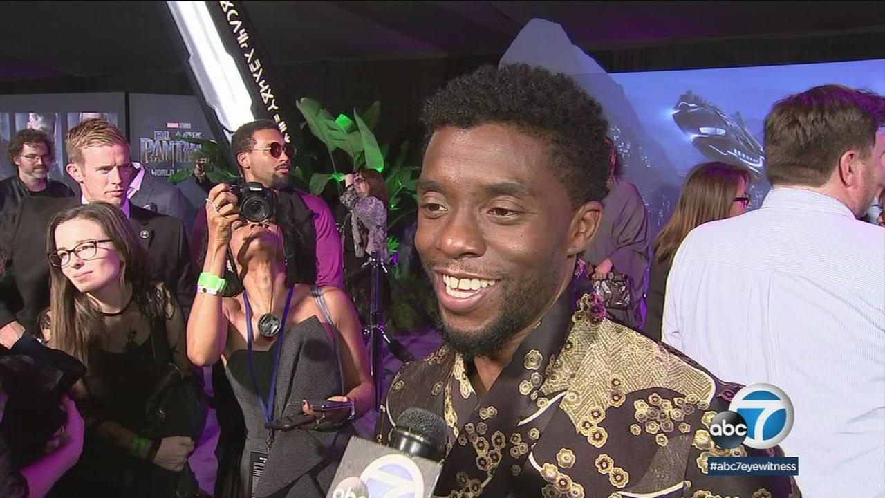 Chadwick Boseman, who plays main character TChalla in Black Panther, is shown during an interview at the movie premiere on Hollywood.