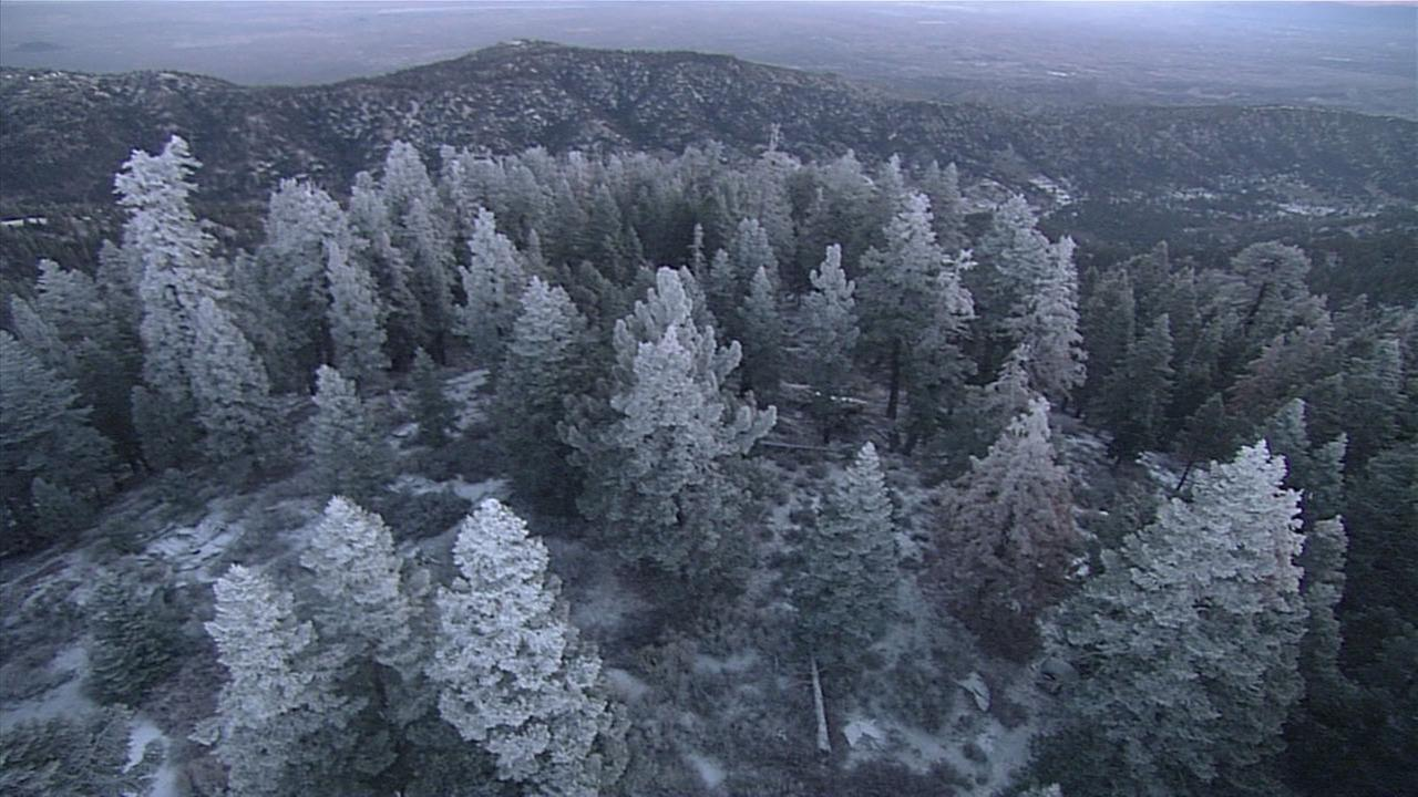 Snow covers trees in the Angeles National Forest on Monday, Feb. 19, 2018, as a winter weather advisory is in effect for some parts of the Southland.