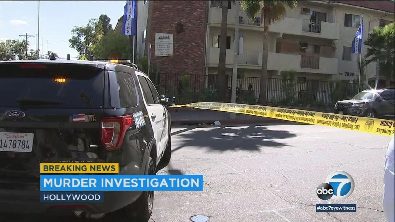 A murder investigation is underway in Hollywood, where a woman was found beaten to death Wednesday.