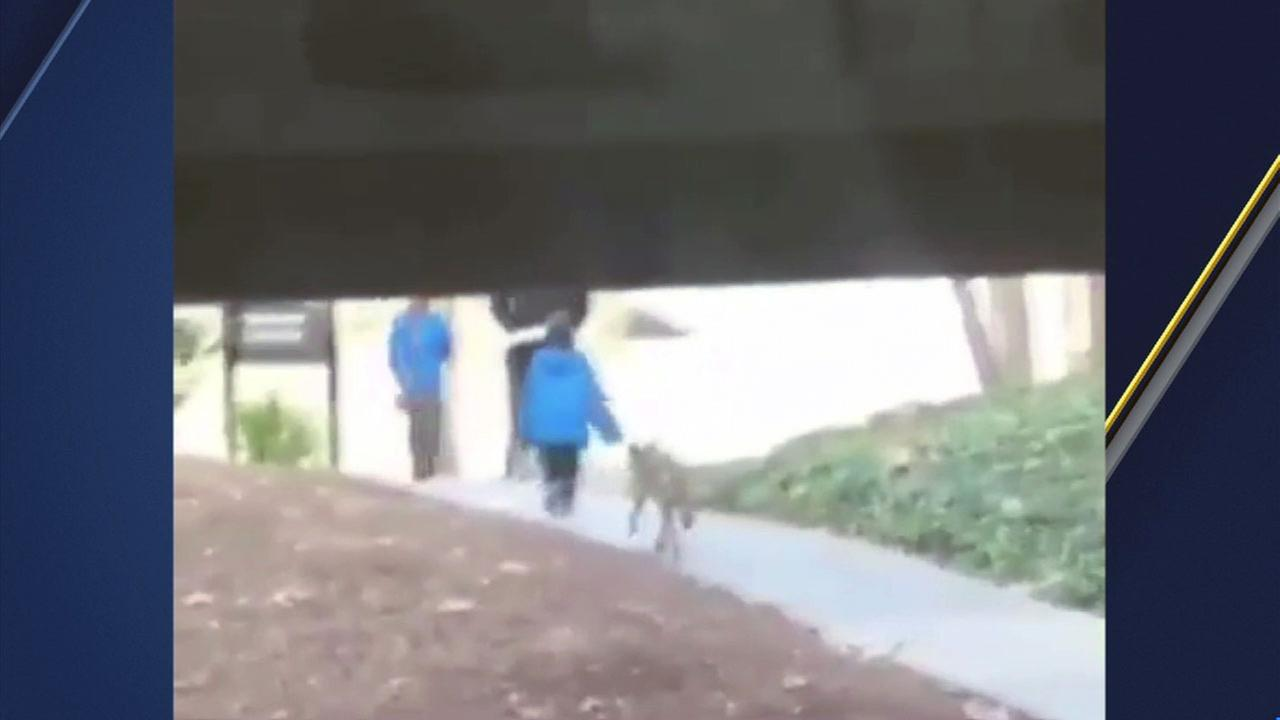 Video captured by a person on campus shows a coyote following a family with two young children, getting dangerously close to one of them Wednesday, March 14, 2018.