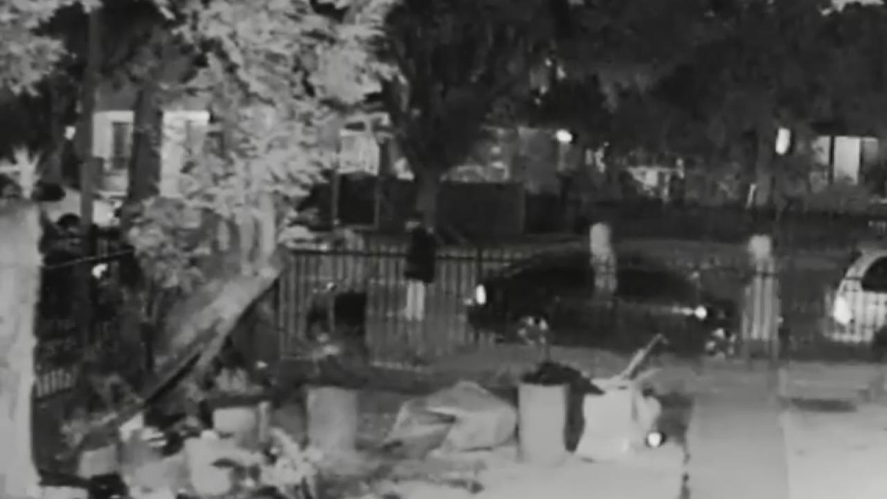 Police have released surveillance video in hopes of identifying four suspects wanted in the shooting death of a dog outside a South Los Angeles home.