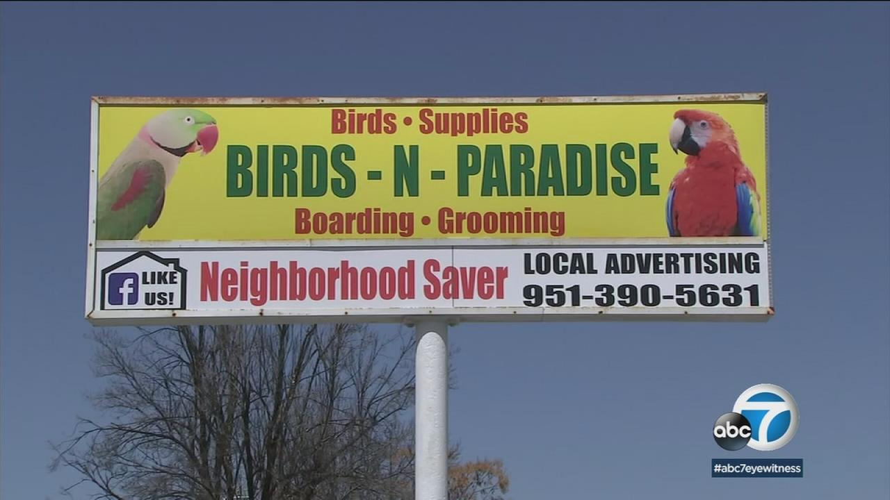 A Menifee bird shop called Birds-N-Paradise is shown on a billboard ad in the area.