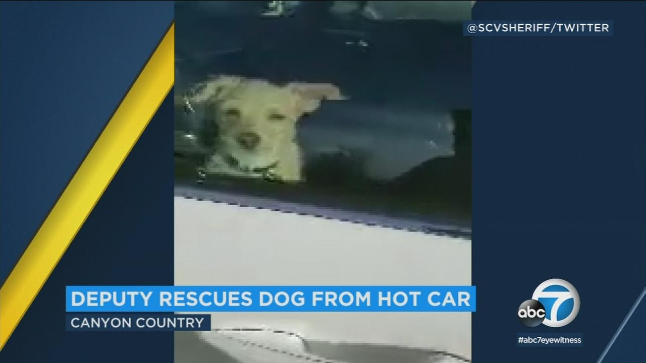 A sheriffs deputy broke a window to rescue a small dog that had been left in 90-degree weather in a car parked at a Walmart in Canyon Country.