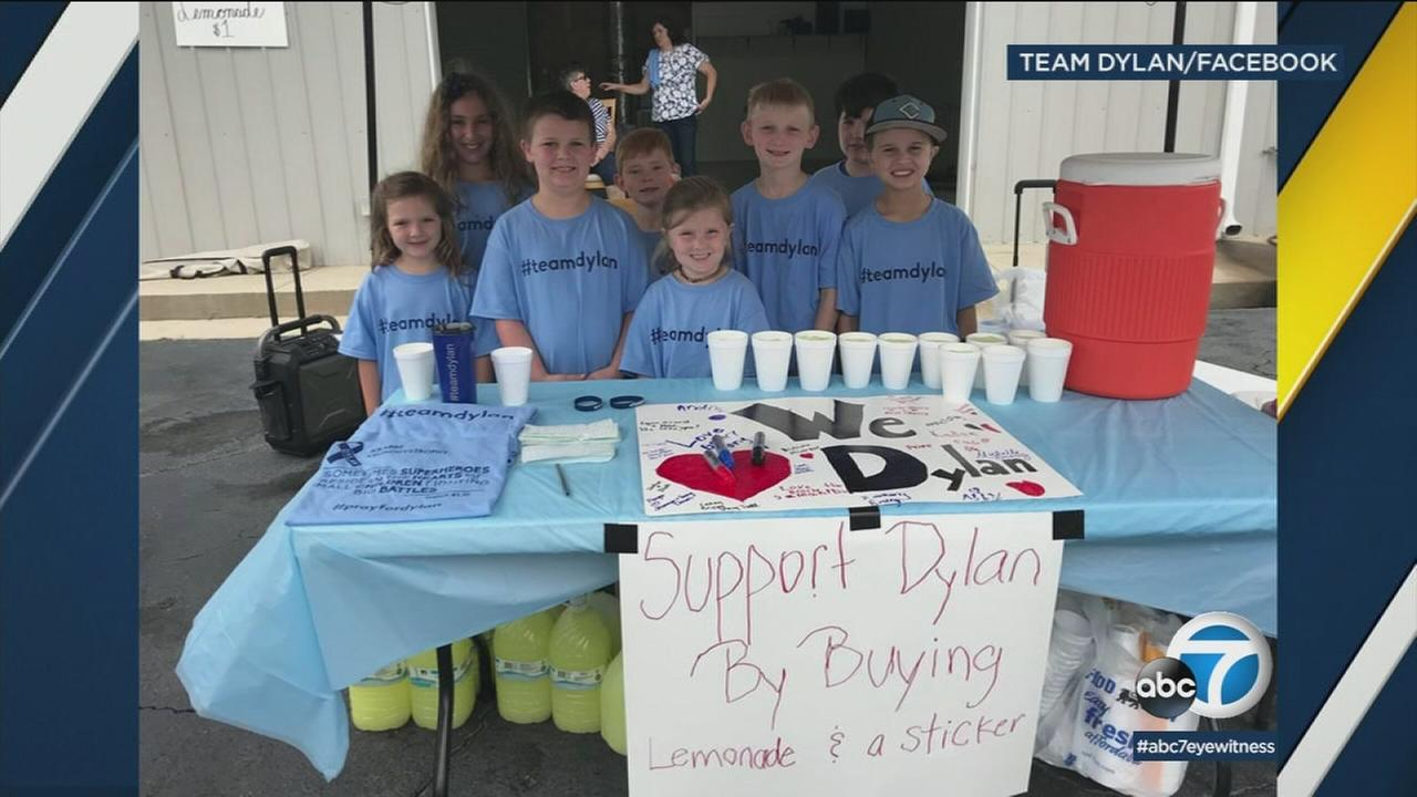 A 9-year-old South Carolina boy has raised $6,000 selling lemonade to help his sick baby brother.