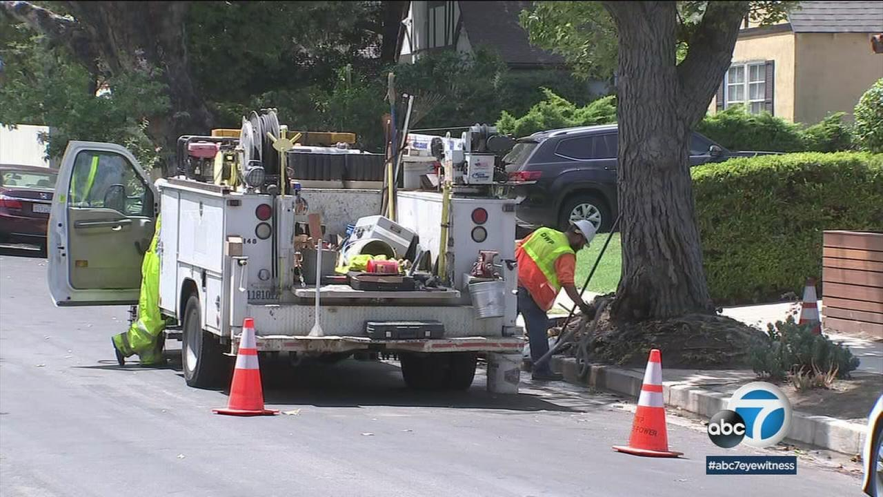 City crews are fixing a water leak in North Hollywood caused by a trees roots days after it was first reported.