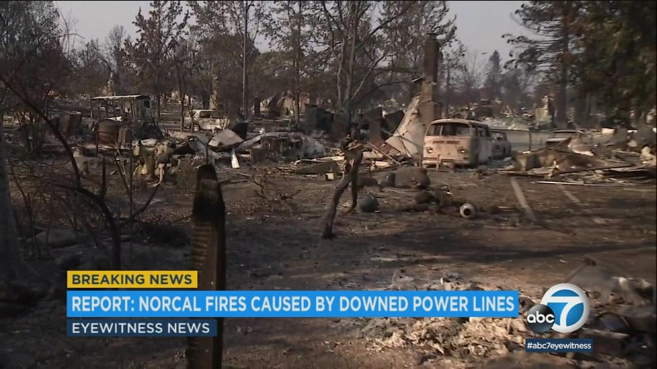 A dozen Northern California wildfires last fall, including two that killed a total of 15 people, were caused by downed power lines, officials say.
