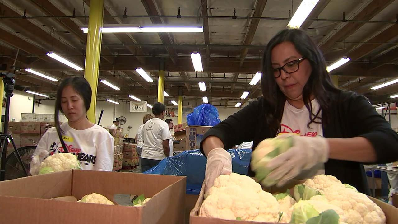 Volunteers help sort cauliflower at the Los Angeles Regional Food Bank.