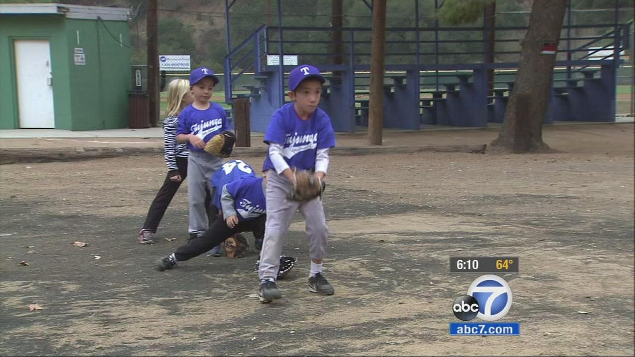 Some artificial turf belonging to the Tujunga Little League has been stolen, and now the group is scrambling to replace it.