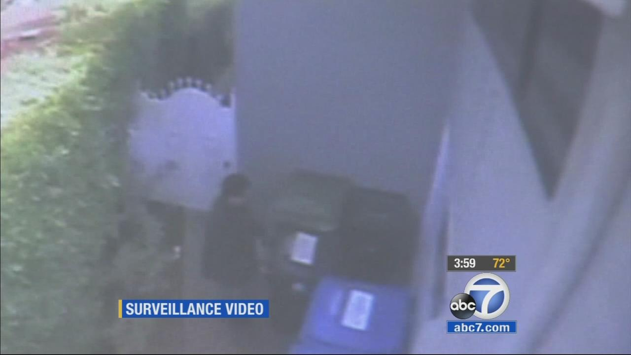 Surveillance video captured a Studio City burglar on Monday, Jan. 12, 2015.