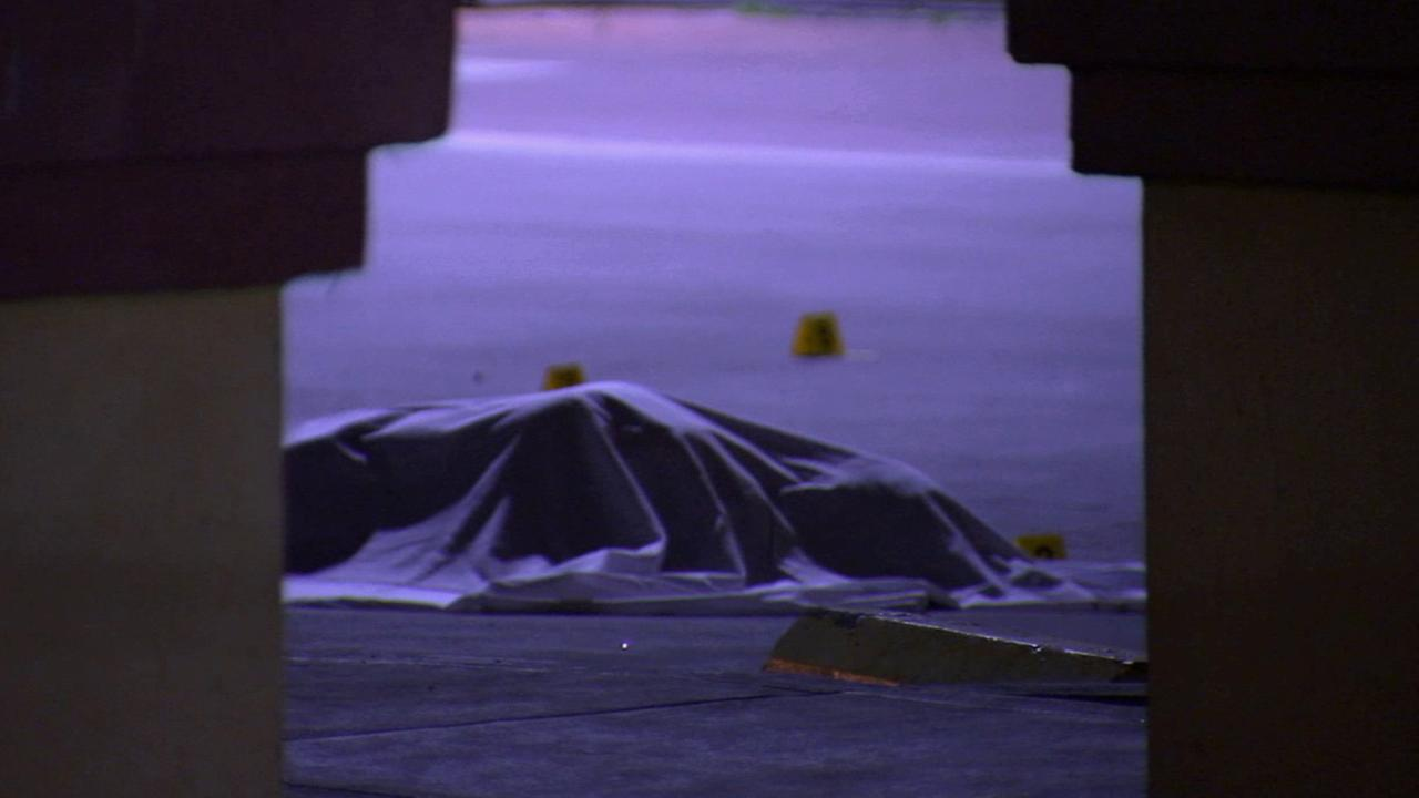 A womans body is covered with a sheet. She was found dead with multiple stab wounds in Pacoima on Wednesday, Jan. 28, 2015.