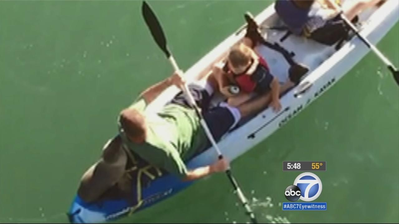 A sea lion pup joined an Orange County family on their kayak trip on Valentines Day.
