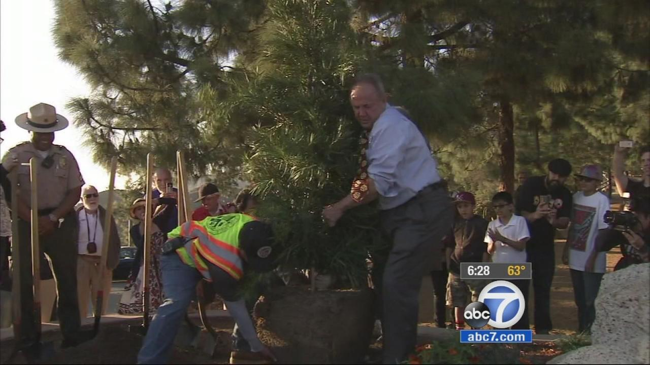 A new tree was planted in Griffith Park to honor former Beatle George Harrison. It replaces the previous tree honoring him, which died of beetle infestation.