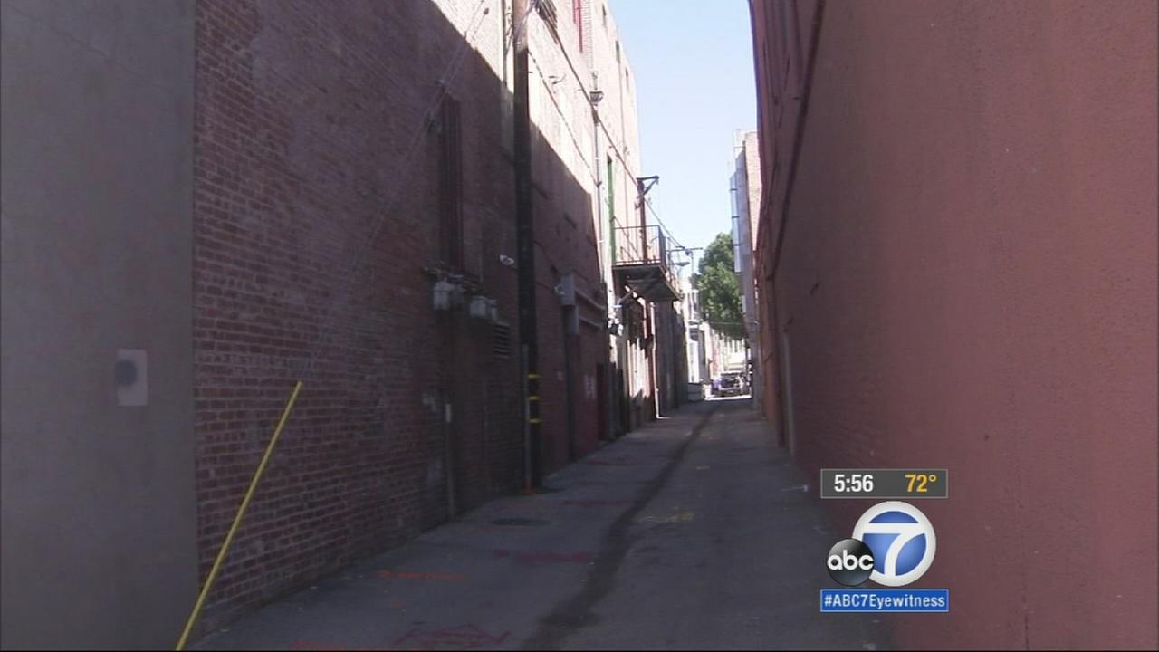 An alleyway between State Street and Citrus Avenue in Redlands will be converted into a public park as part of a revitalization project for the citys downtown area.