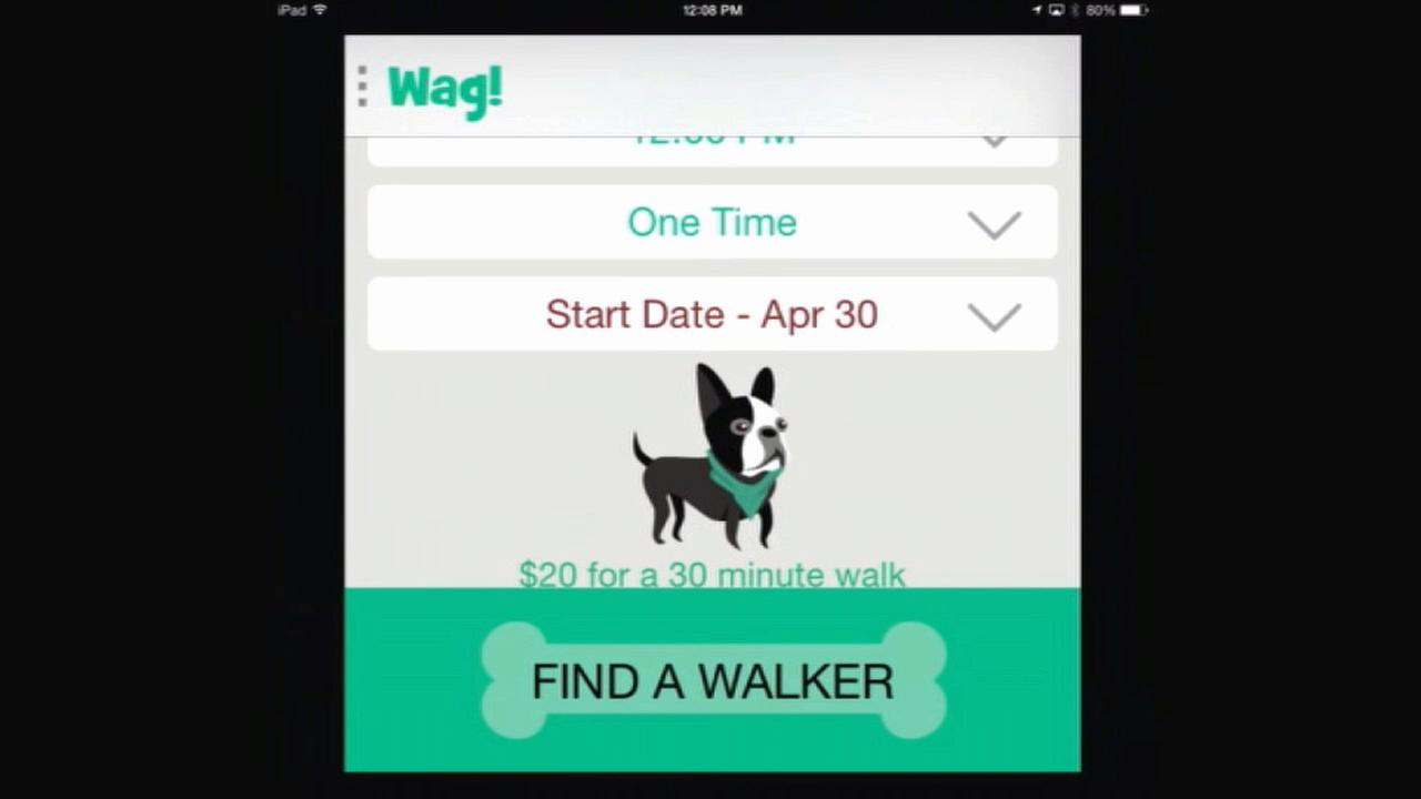 Mobile app Wag helps find dog walkers