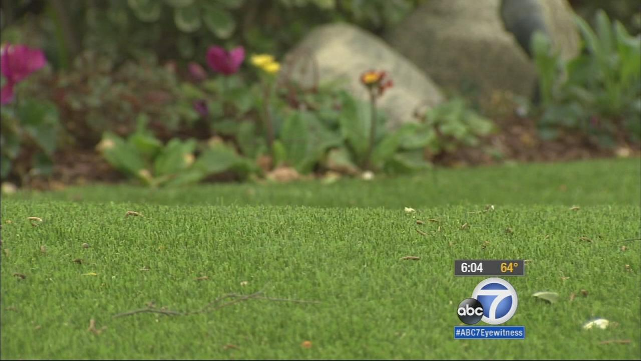 Rhonda and Greg Greenstein installed artificial turf at their Agoura Hills home.