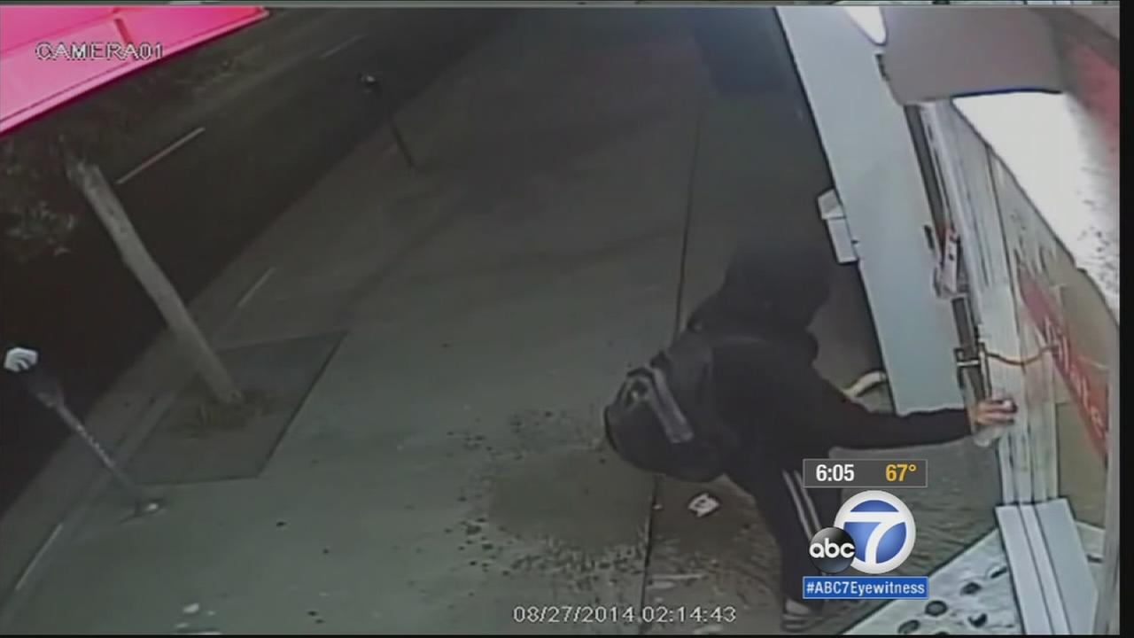 A suspect was caught on camera vandalizing a Westwood storefront.