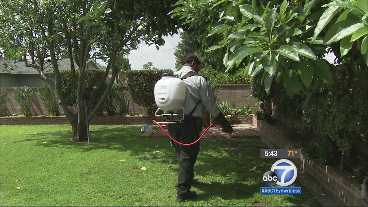 Mosquito season is near as the evenings are beginning to get warmer, and a new service is out offering to eliminate the pesky bugs.