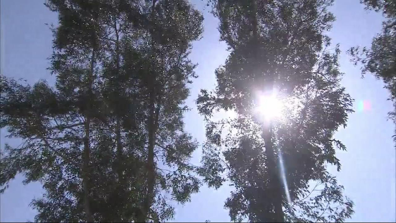 Hot weather hit the Inland Empire Monday, June 8, 2015.
