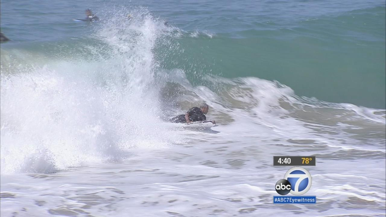 A boogie boarder is shown catching a wave in Manhattan Beach.