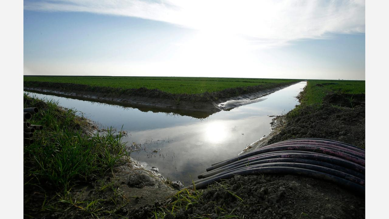 FILE - In this Feb. 25, 2016, file photo, water flows through an irrigation canal to crops near Lemoore, Calif. Northern California