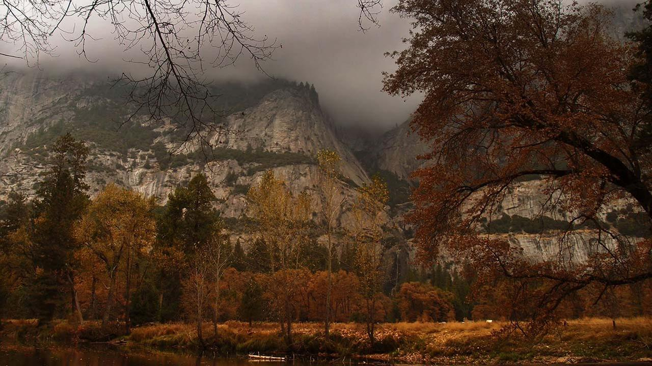 Breathtaking photos out of Yosemite National Park of trees turning for fall