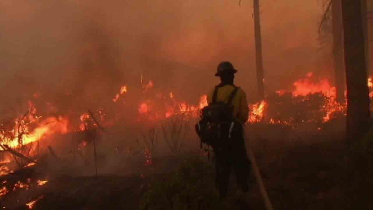 Firefighters built containment lines around a wildfire near Weaverville, Calif. Monday, Aug. 25, 2014.