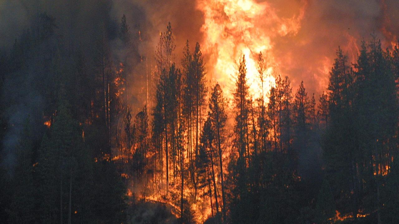 Oakhurst fire