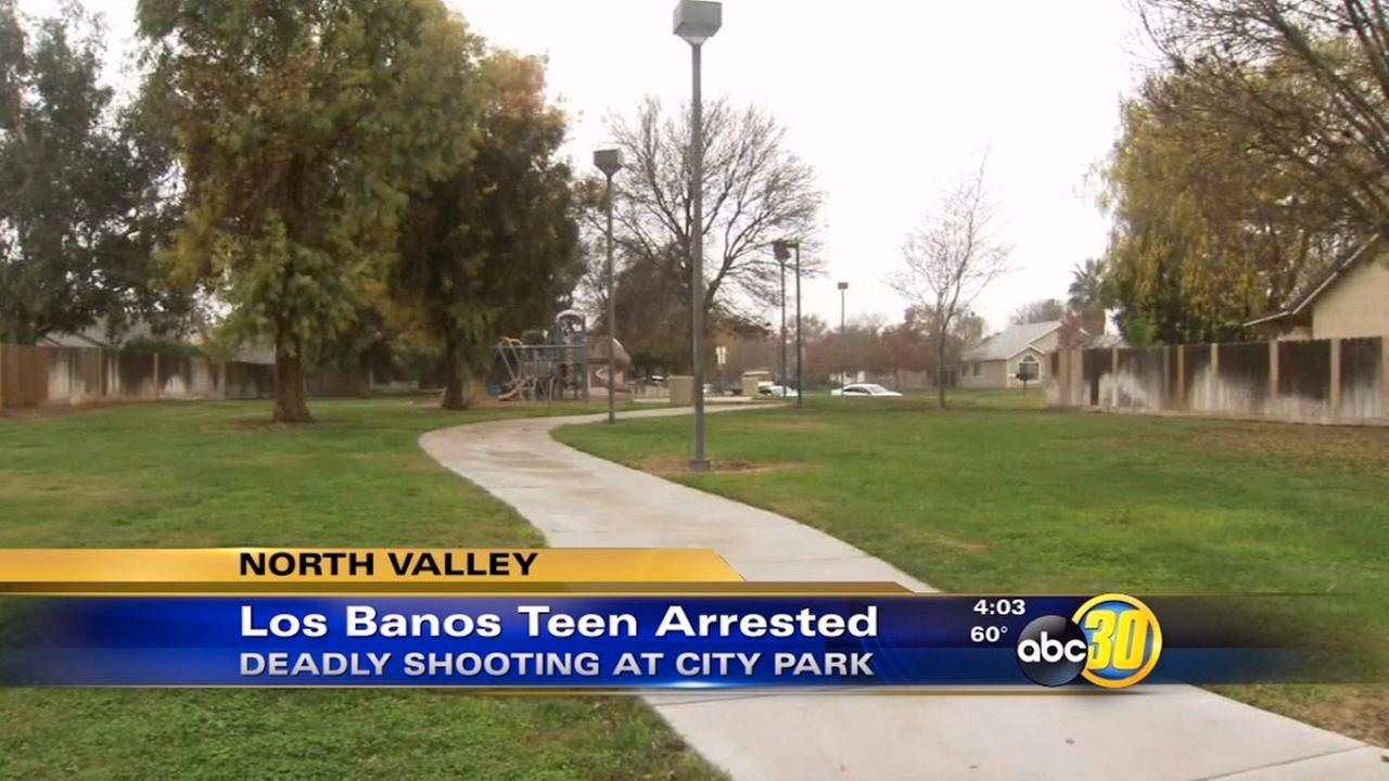 Teenager arrested in deadly Los Banos shooting