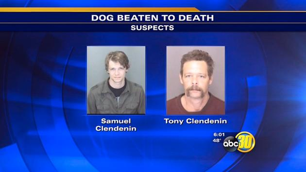 Dog beating suspects