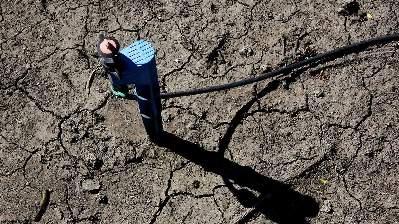 In this photo taken Friday March 27, 2015, low-flow water emitter sits on some of the dry, cracked ground of farmer Rudy Mussis almond orchard in the Sacramento-San Joaquin Delta near Stockton, Calif.