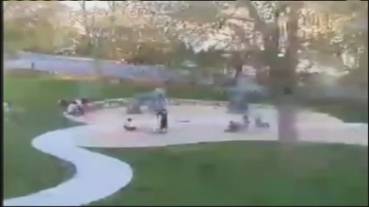 Massive tree falls on kids