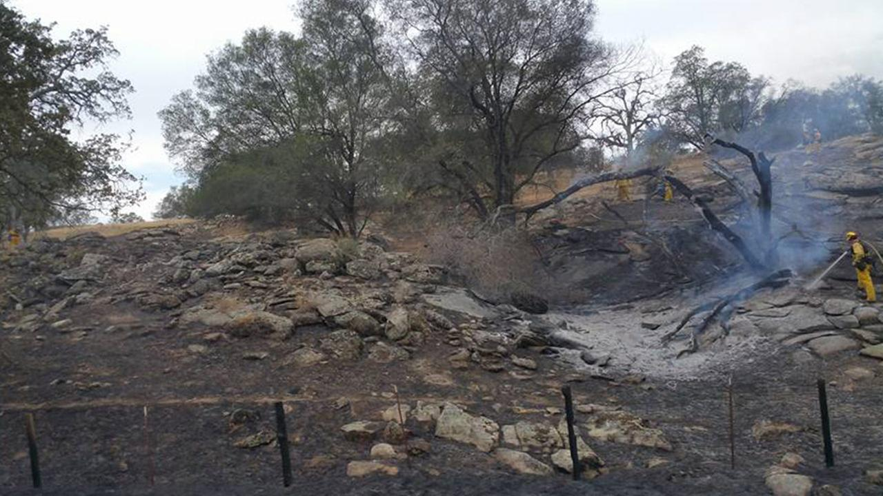 A grass fire broke out near the ONeals area in Madera County on Tuesday, June 9, 2015.