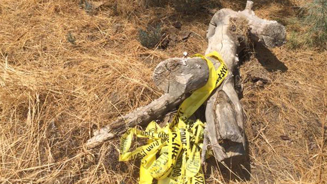 A man was found shot to death near Coalinga on Tuesday, July 21, 2015.