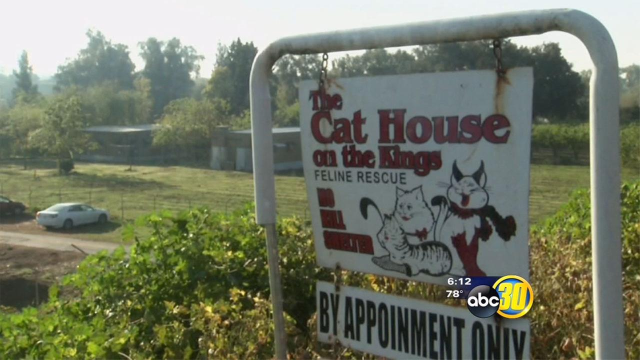 Valley non-profit animal shelter in the running to win $5,000