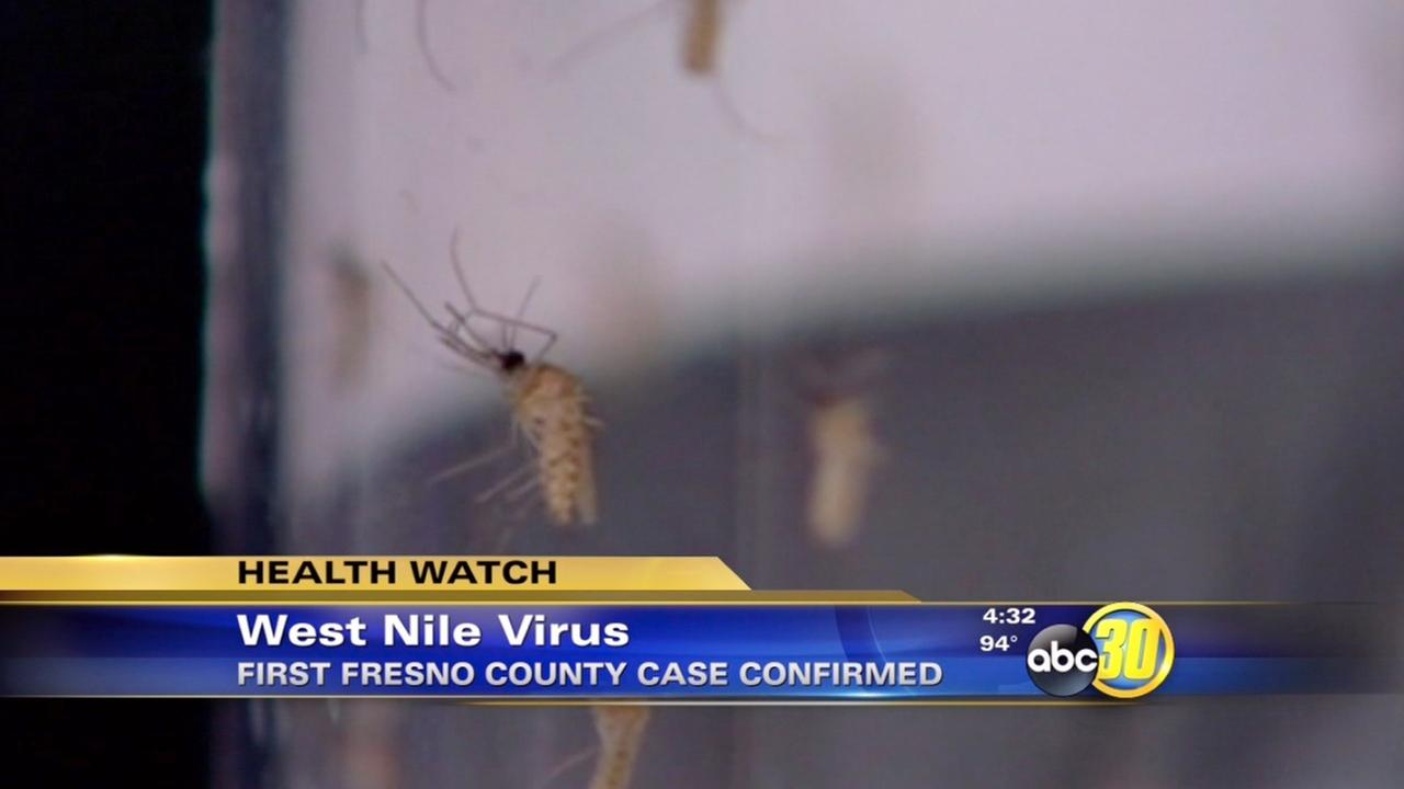 Fresno County reports first West Nile virus case of 2014