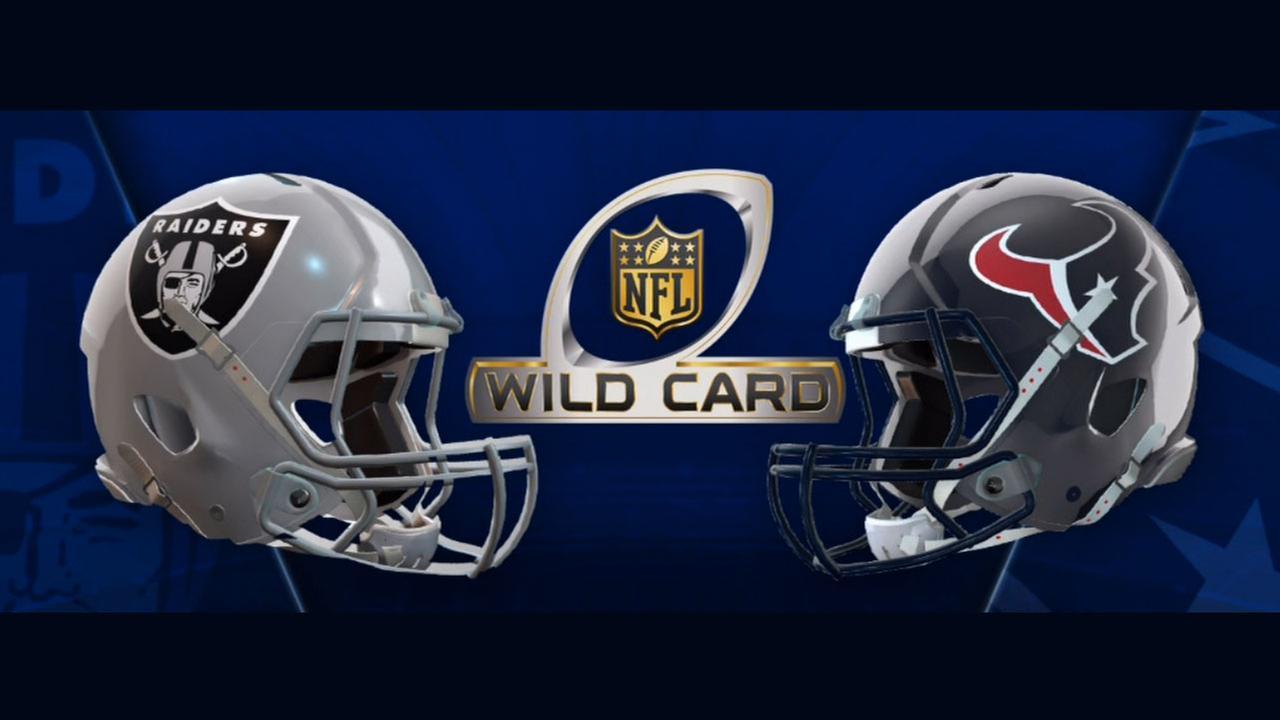 Oakland Raiders 14   Houston Texans 27