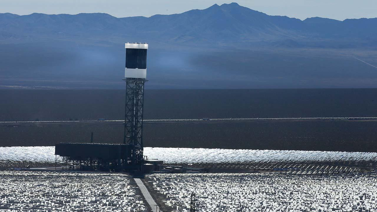 New estimates for the Ivanpah solar plant say thousands of birds are dying yearly, roasted by the concentrated sun rays from the more than 300,000 mirrors