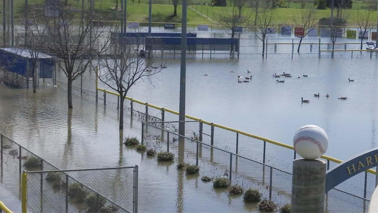 From first base to the outfield, Mother Nature has transformed Harry Goorabian Park in Northeast Fresno into a lake.