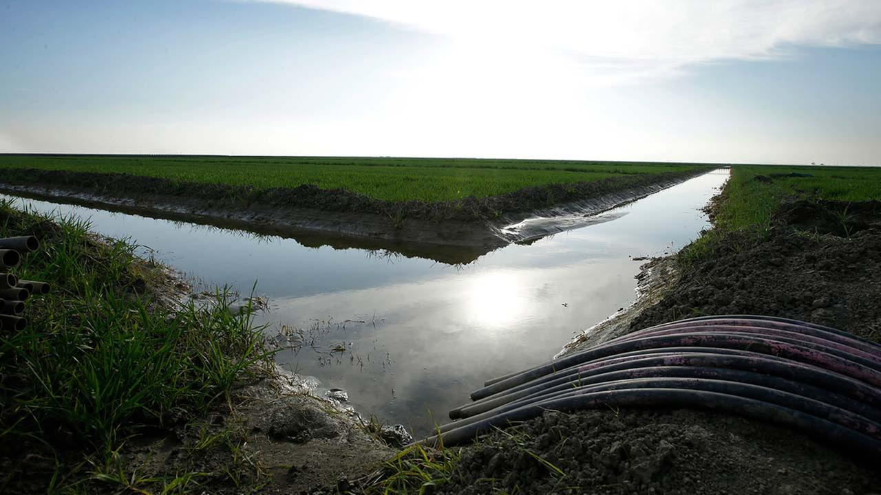 FILE - In this Feb. 25, 2016 file photo, water flows through an irrigation canal to crops near Lemoore, Calif. (AP Photo/Rich Pedroncelli, File)