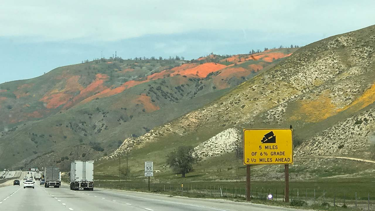 Motorists getting treated to a beautiful sight on the Grapevine