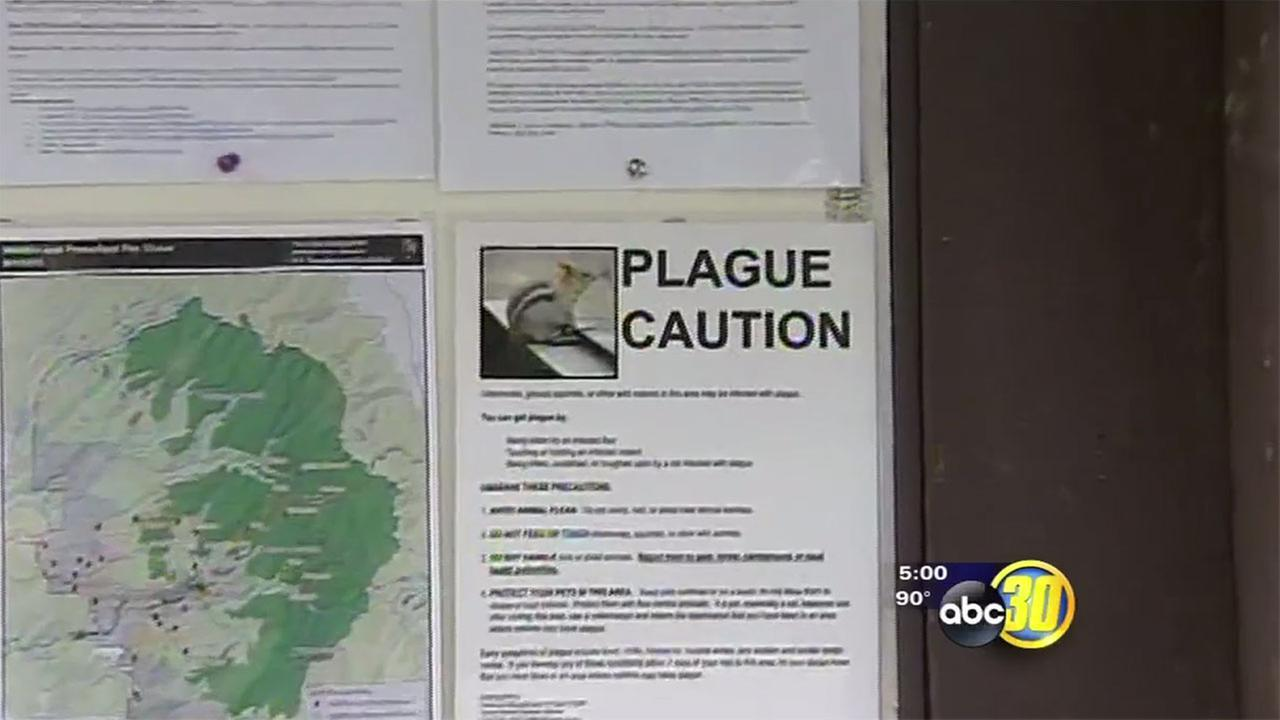 FILE - Plague warnings at Yosemite National Park